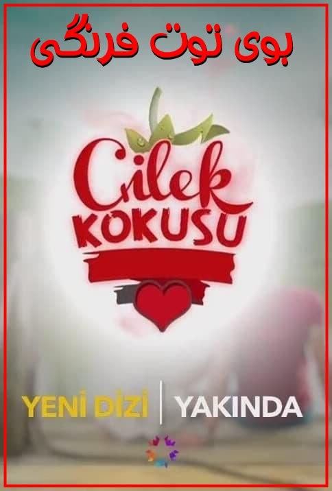 دانلود سریال ترکی بوی توت فرنگی با زیرنویس فارسی