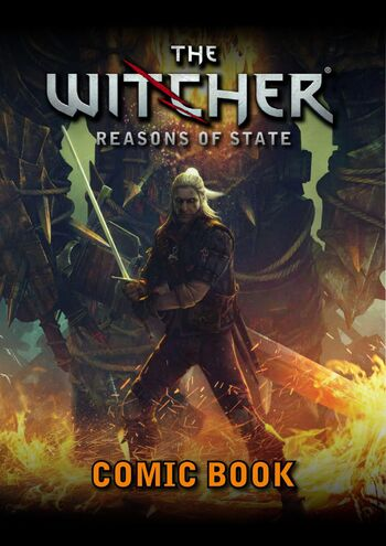 The-Witcher-Reasons-of-State-2011