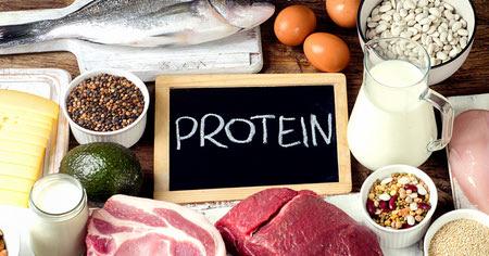 همه چیز درباره رژیم پروتئین