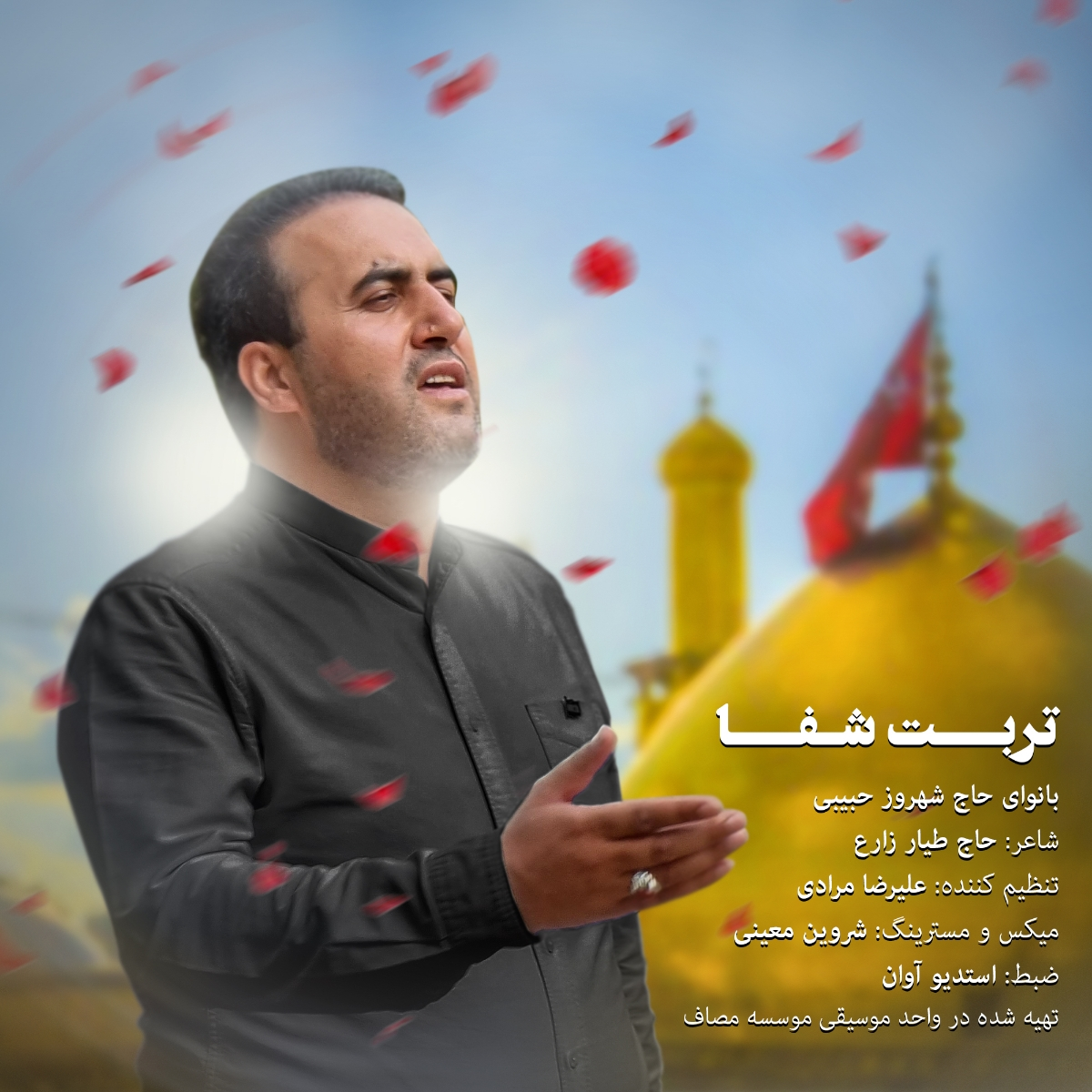 https://s19.picofile.com/file/8439314568/09Shahrooz_Habibi_Torbate_Shafa.jpg