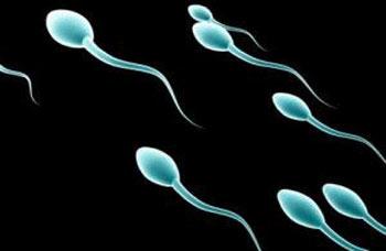همه چیز درباره اسپرم sperm