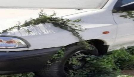 در پارکینگ سایپا چه خبر هست؟! دپو پراید وانت 151