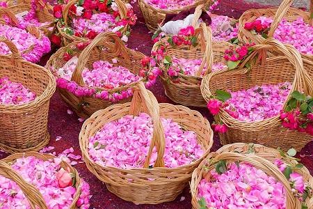 خواص و مضرات گلاب برای کودکان rosewater